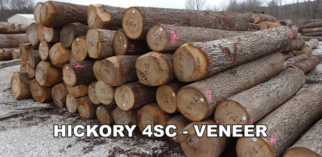 Logs for sale baillie lumber hardwood supplier