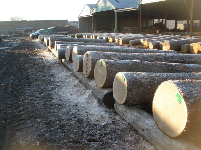 Hardwood Log Yard Williamsport PA