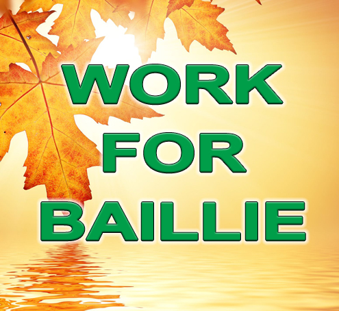 work-for-baillie-image