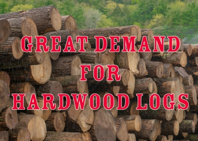 Great Demand for North American Hardwood Logs