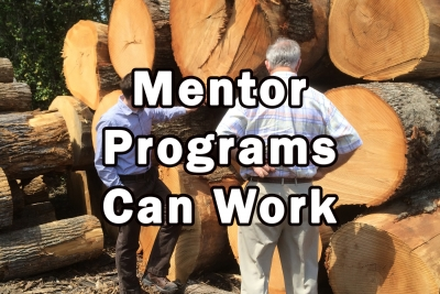Can a Mentorship Program Help Your Business?