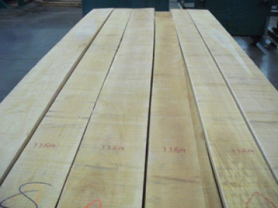 Should You Be Considering Yellow Birch More Often?