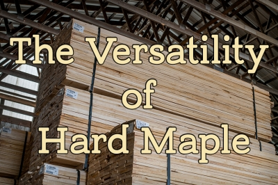 Could the Versatility of Hard Maple Work for You?