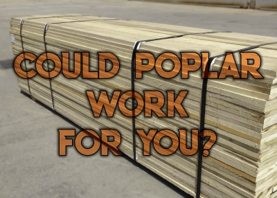 Could Poplar Work For You?
