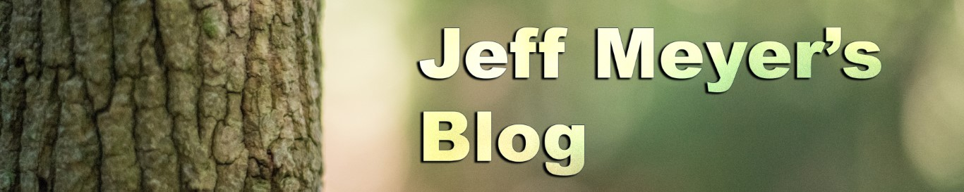 jeff meyers blog