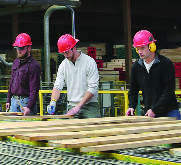 hardwood-lumber-supplier-graders