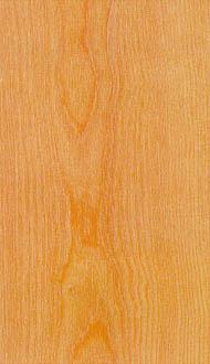 yellow birch baillie lumber hardwood supplier