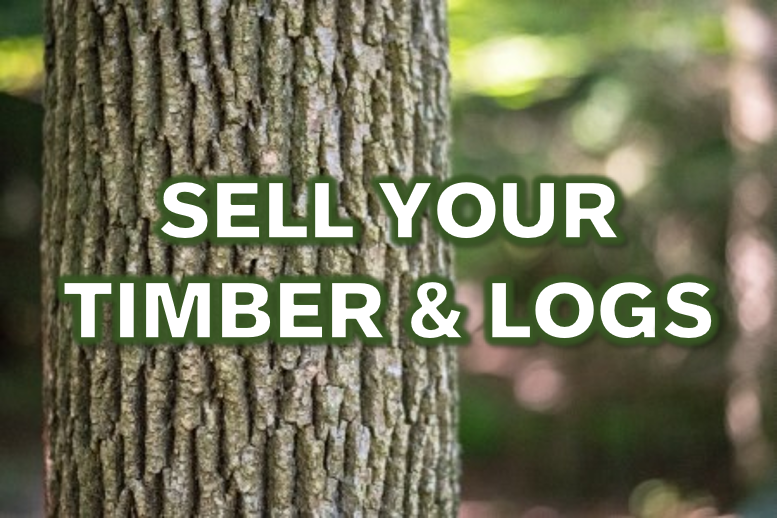 sell your timber and logs