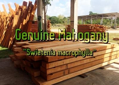 Hardwood Lumber from Baillie - Baillie Lumber - Hardwood