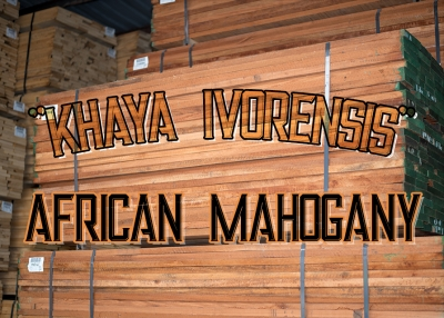 Sourcing African Mahogany
